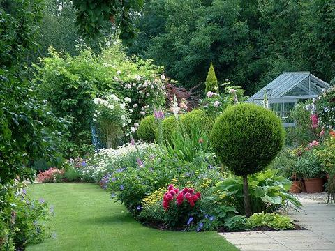 Planting schemes on pinterest shade garden cottage for Cottage garden design
